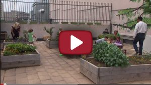 A great community garden on a rooftop in Nashville