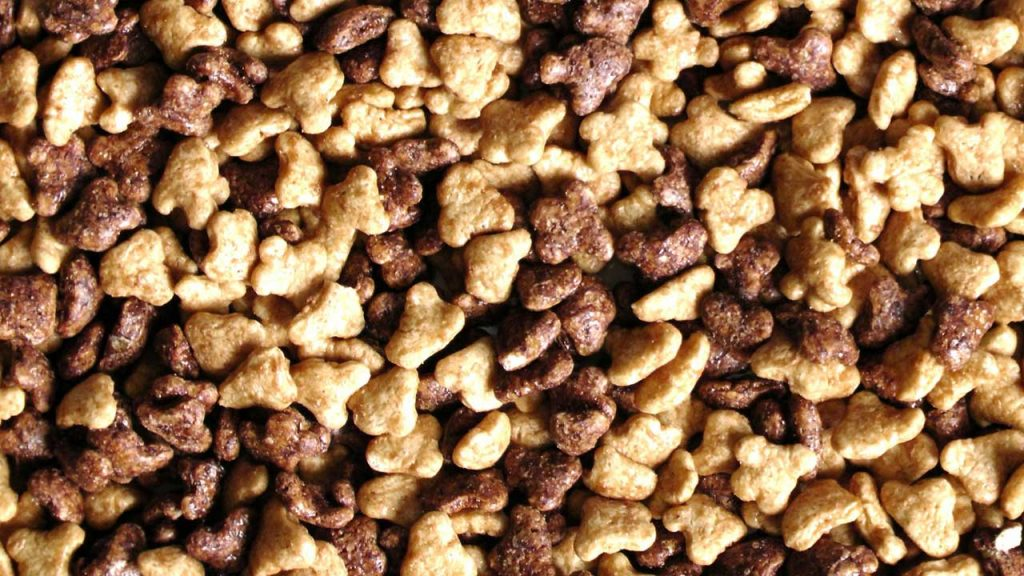 What are Processed Foods -Breakfast cereals