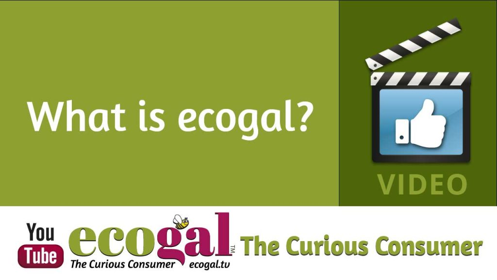 What is ecogal - Dycee Wildman video