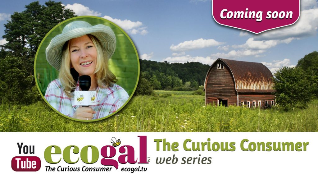 Coming soon: ecogal The Curious Consumer web series