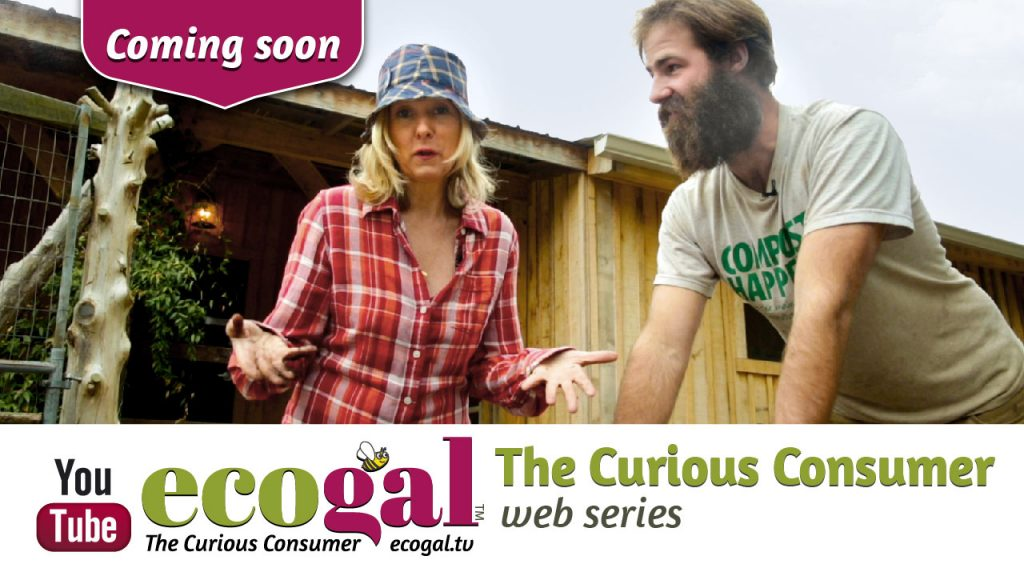 ecogal The Curious Consumer - webseries 1