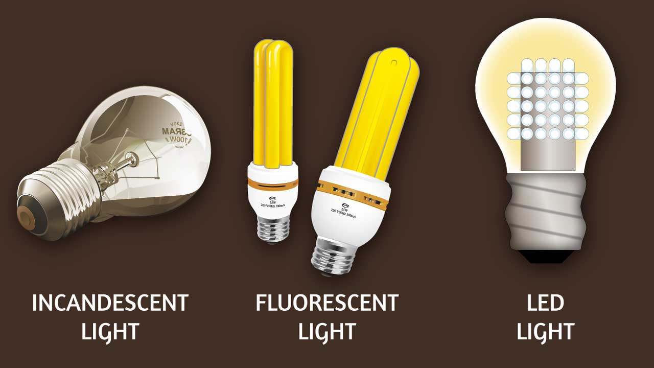 Three types of light bulbs: Incandescent, Fluorescent, LED