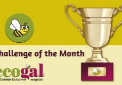 ecogal Challenge of the Month